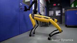 Hey Buddy Can You Give Me a Hand    ROBOT KÖPEKLER