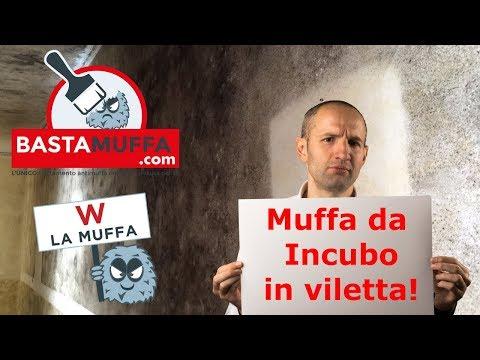 Muffe da Incubo a Milano! Caso studio Villetta con analisi e applicazione