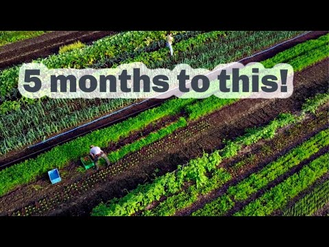 Building a working farm in 5 months...