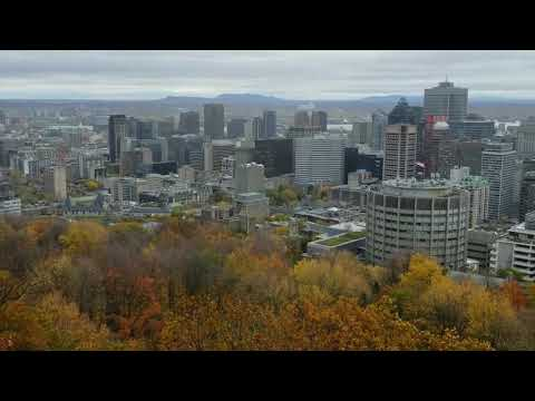 View of Montreal from atop Mount Royal