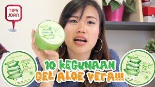 10 Kegunaan Gel Aloe Vera! | Tips Nihao