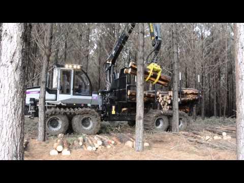 Forwarder Logset 8F GT Minusa - No Brasil