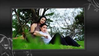 ems & lhef free nuptial 2010