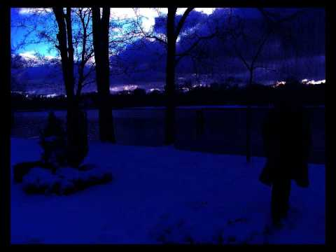 The Caretaker - stardust