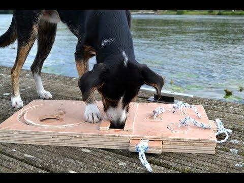 Hundespiel aus Holz bauen  YouTube