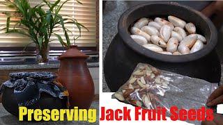 ചക്കക്കുരു മാസങ്ങളോളം കേടുകൂടാതെ സൂക്ഷിക്കാൻ 4 രീതികൾ How to Preserve Jack Fruit Seeds for Months
