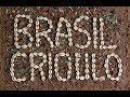 O Povo Brasileiro - Episódio 5: Brasil Crioulo