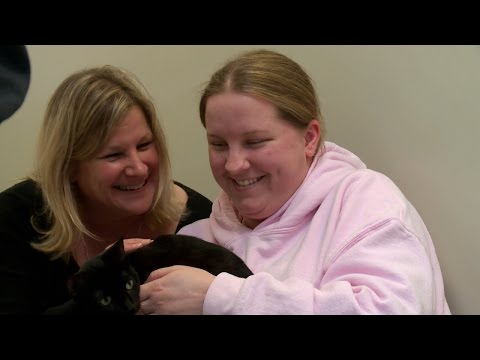 See How These Adoptable Cats Bring An Autistic Woman Out Of Her Shell