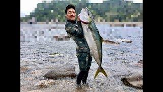 2018年5月、日本海某所。魚突きによるモンスターヒラマサ狙いで訪れた遠...