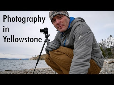 Yellowstone Landscape and Wildlife Photography Trip