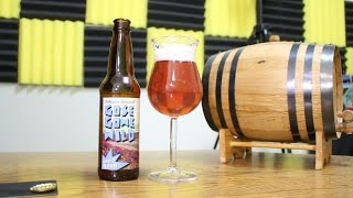 UFC Fight Night 108 Beer Pairing with Flyin' Brian J - Gose