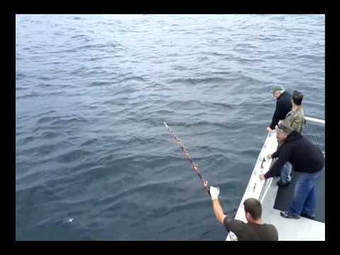 Tuna Fishing off Nova Scotia