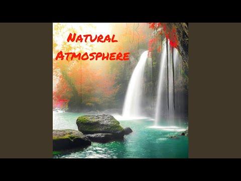 Natural Atmosphere - Melodies for Yoga Training: Yoga Nidra, Bikram Yoga, Vinyasa Yoga and Hatha Yoga