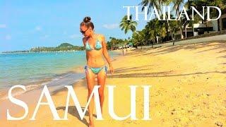 Остров Самуи | Таиланд| Альтернатива Пхукету| Слоны и водопады| Шикарные пляжи| Ночной рынок|