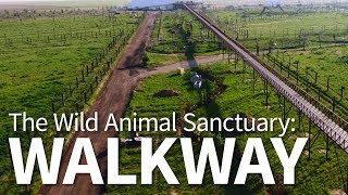 Wild Kingdom   The Wild Animal Sanctuary   Walkway