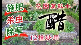 醋的12種妙用施肥殺蟲除草清潔樣樣行你全會用嗎花園萬能水後院種植必不可少How to use vinegar in gardening?