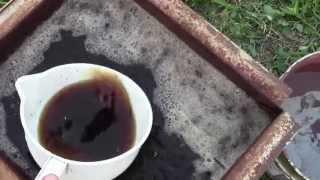 видео Какие удобрения для винограда необходимо вносить