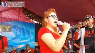 Download lagu Goyang Dangdut Hot Paling Parah Novi Amanda MP3