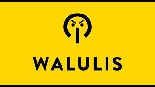 Karrierebooster Diffamierung: Was WALULIS auf YouTube anrichtet