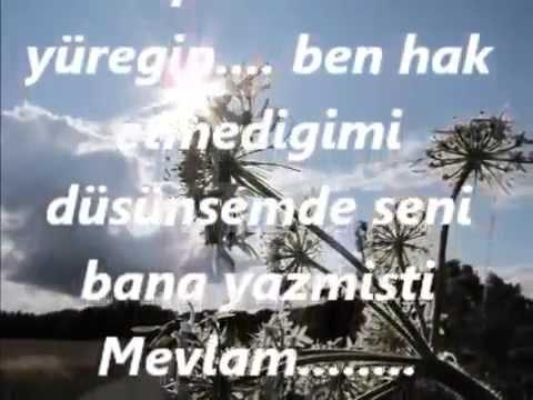 Fatih Kisaparmak - Mor salkımlı