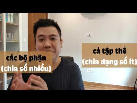 [Tiếng Anh THCS, THPT] S_V_A: Khi chủ ngữ là Collective noun thì Verb chia sao?