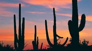 Gunslinger - Western Blues/Metal Fusion (Original Song)