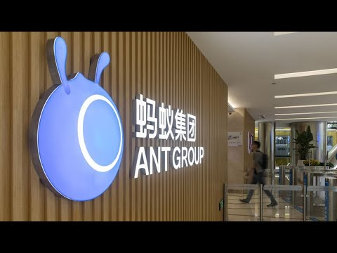 Ant Demand Shatters Shanghai Records