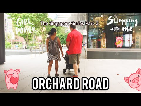 Orchard Road Singapore CNY 2019. Street Must Visit, full of luxury shopping centres & 5 star hotels