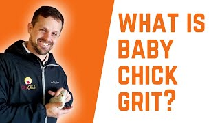 What Is Baby Chick Grit? And Do My Baby Chicks Need It?