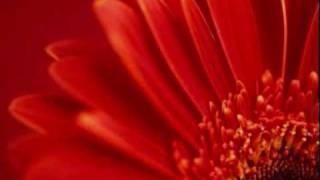 [Instrumental karaoke] A thousand miles - Vanessa Carlton