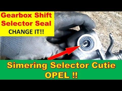 Simering Selector Cutie de Viteze |  Gear shift shaft seal