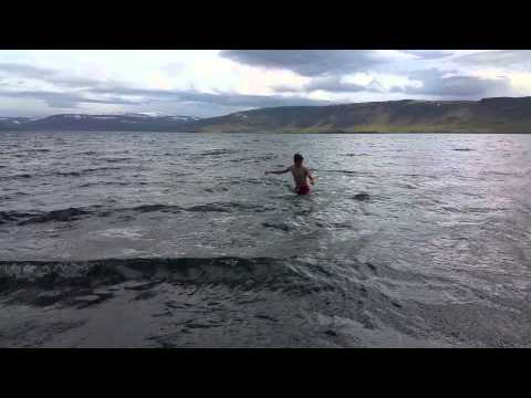 Swimming in the ice cold, 10°C (50°F), Whale Fjord, Iceland
