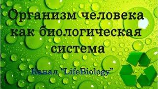 Организм человека как биологическая система