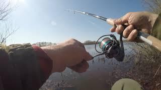 Весна 2020.Снова река,снова браконьеры,прекрасная природа и конечно рыбалка.