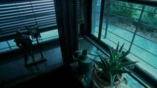 Music video by Hideaki Tokunaga performing My Life. (C) 2004 UNIVER...