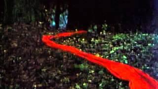 The Fruit of Paradise ('Ovoce Stromu Rajských Jíme') - Robert pursues Eva