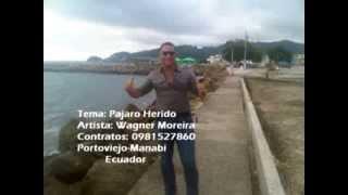 Pajaro Herido-Wagner Moreira Acustica