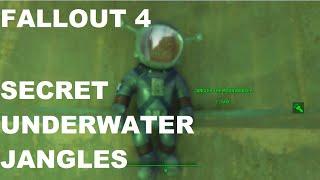 Fallout 4: Hidden Underwater Jangles & Bonus Underwater Cat Pictures