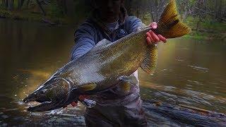 Centerpin Float Fishing for Michigan Salmon and Steelhead