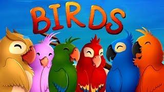 Birds: Free Match 3 Games - Puzzle Games - VascoGames Games Walkthrough