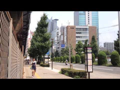 A trip from Okazaki to Tokyo