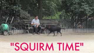 SQUIRM TIME (Episode Six Trailer)