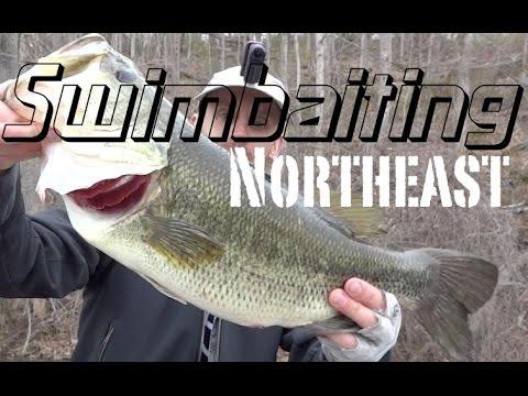 Swimbaiting Northeast (Spring) Part 2 of 4