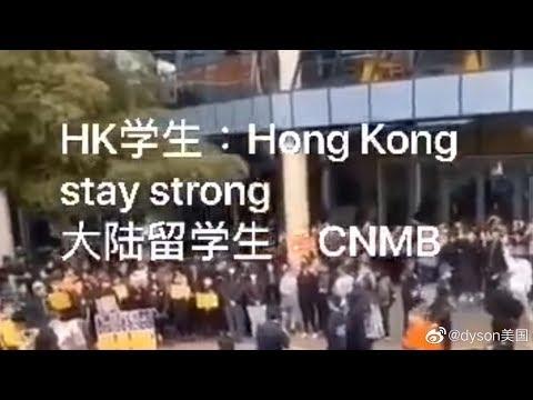 """大圣36:澳洲中国留学生的""""真情流露"""":中国人有当奴隶的自由,很享受当奴隶,甚至还要香港人也来当奴隶。"""