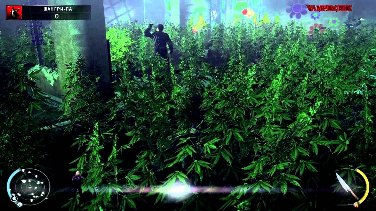 Конопля игра i все о гидропонном выращивании марихуаны
