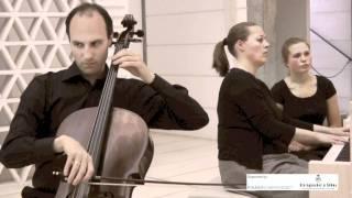 Adagio Sonate - Van Der Pals - Bagsværd - May 2011