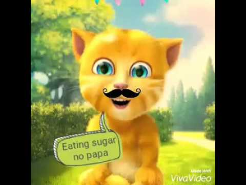 JOHNNY JOHNNY YES PAPA  TALKING TOM GINGER  CAT SONG