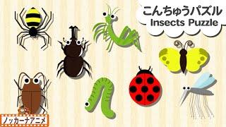 昆虫 色んな虫パズル★カブトムシ・カマキリ★子供向けアニメ★赤ちゃん 喜ぶ 遊び Insects puzzle for kids thumbnail