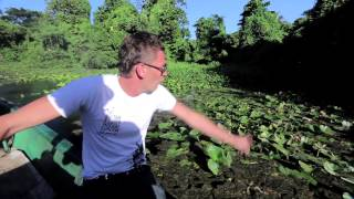Куба Тур: День двенадцатый — Мужская рыбалка.