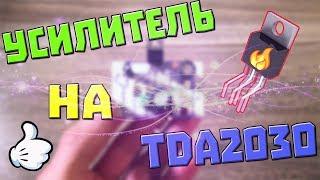видео Усилитель на TDA2030/LM1875 с выпрямителем, темброблоком и защитой